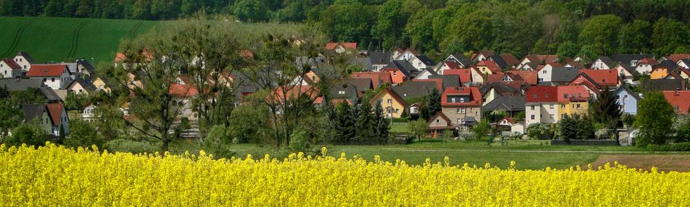 Rapsfeld 01454 Großerkmannsdorf
